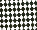 harlequinblack.jpg