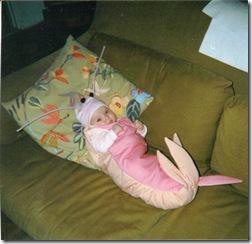 shrimpbaby