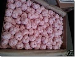 pinkbraidedknotbuttons