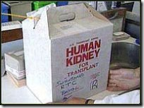 humankidney4tx